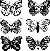 Butterflies Black and White 101